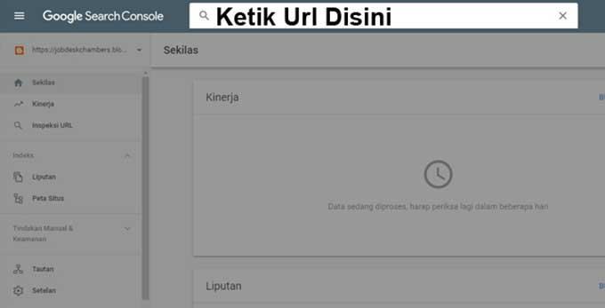 Masukkan URL Website