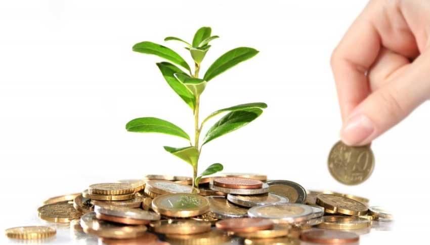 Panduan Investasi Reksadana Pemula
